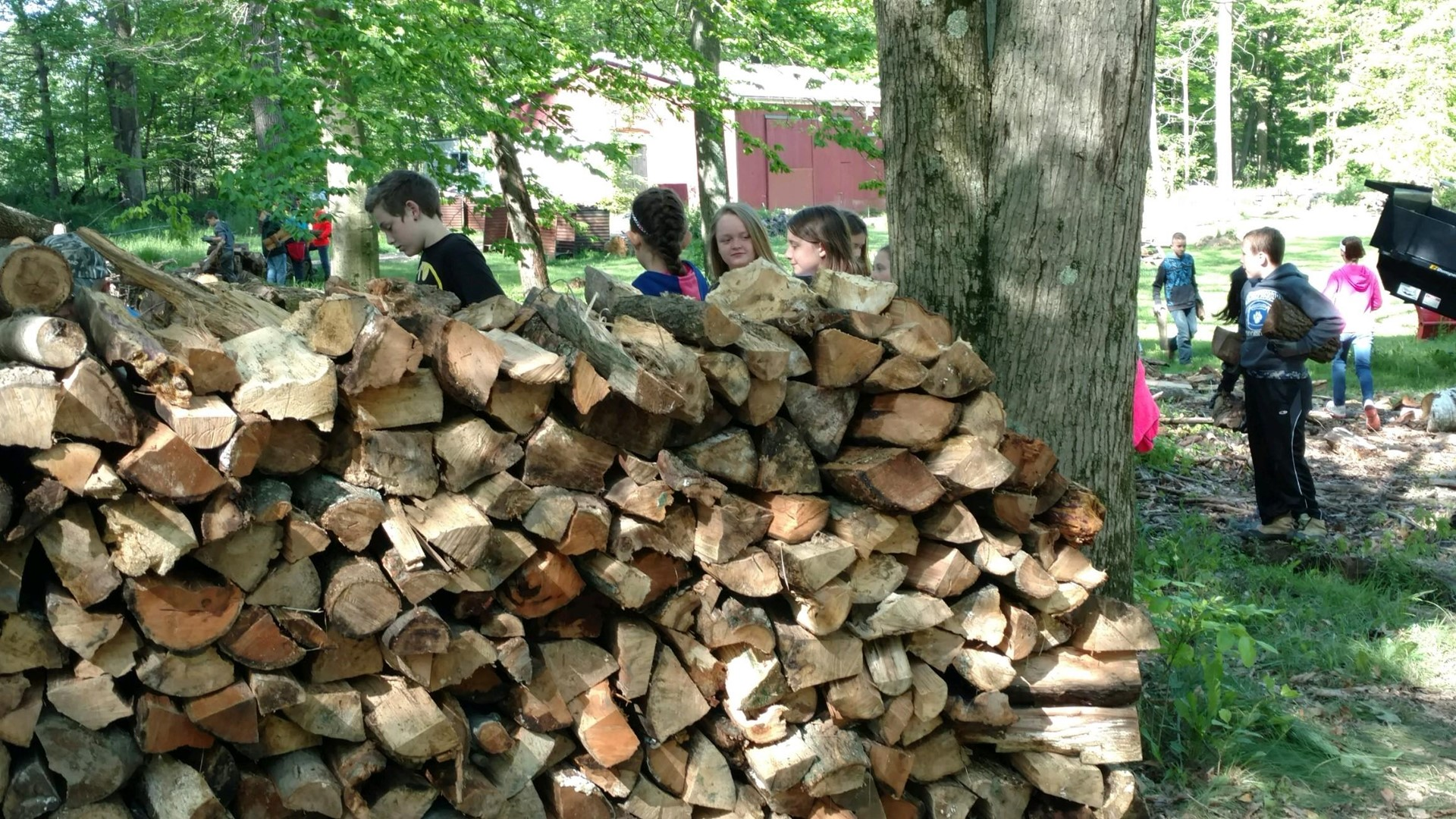 Helping stack firewood for Inspiration Hills