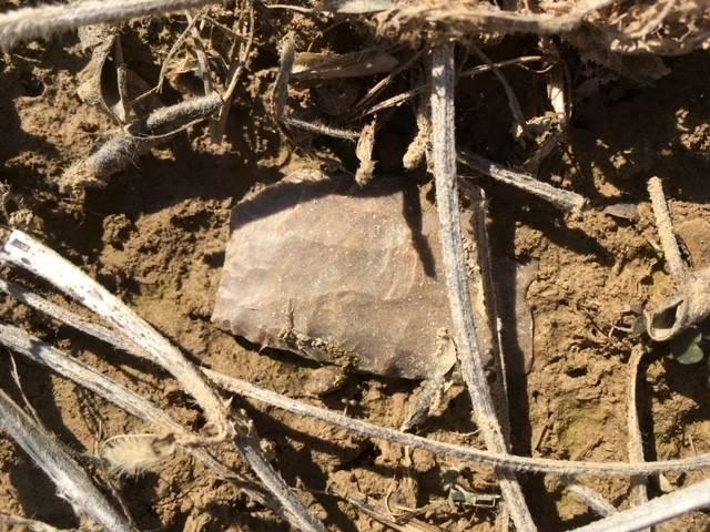 Artifact found during 5th gr Social Studies!