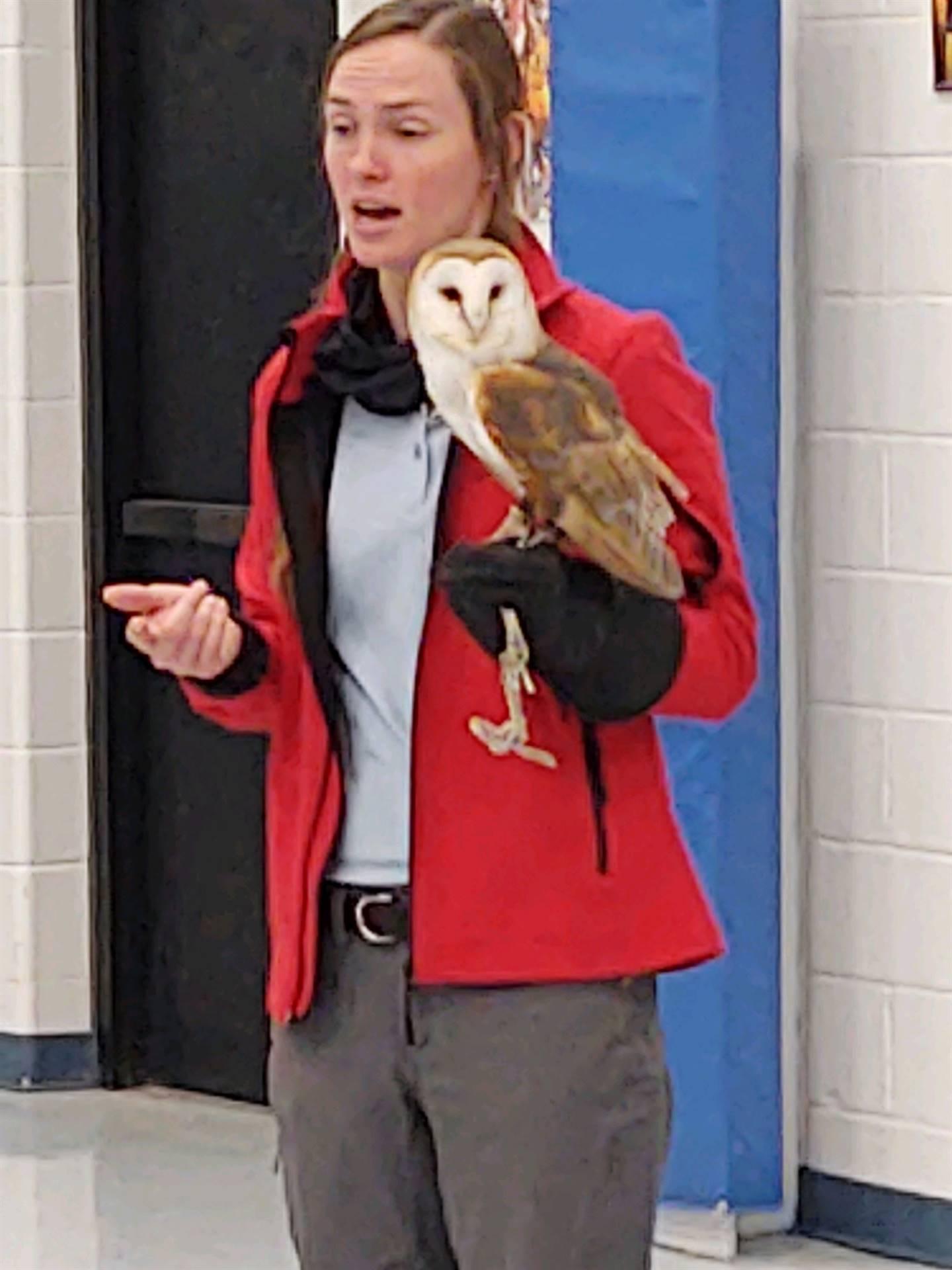 We got to meet Monte, the Barn Owl