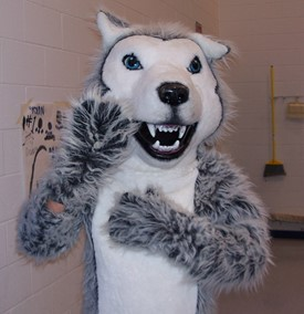 Husky Mascott